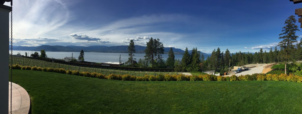 View of lake Okanagan from a wine farm